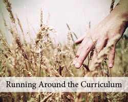 Running Around the Curriculum